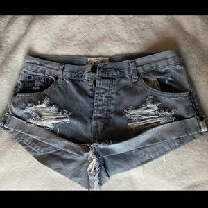 One X Teaspoon Bandits Shorts